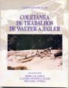 coletanea_de_trabalhos_de_walter.png