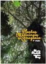 plantas_medicinais.jpg