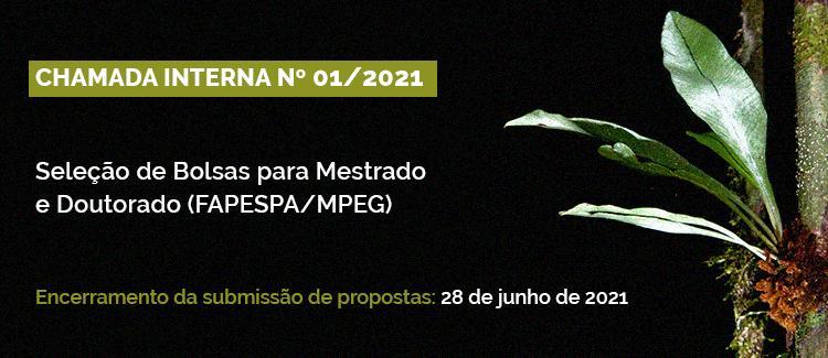 Seleção Bolsas FAPESPA/MPEG