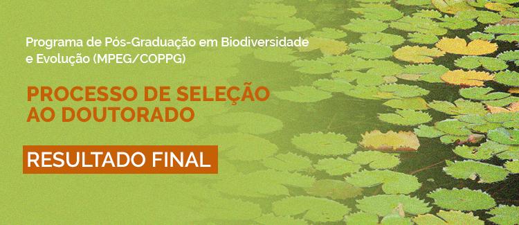 Resultado Final - Doutorado PPGBE 2021