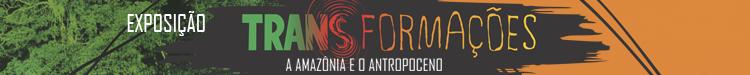 A amazônia e o antropoceno