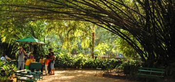 Parque Zoobotânico