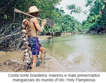 Produção-pesqueira-estudos-costeiros_MuseuGoeldi