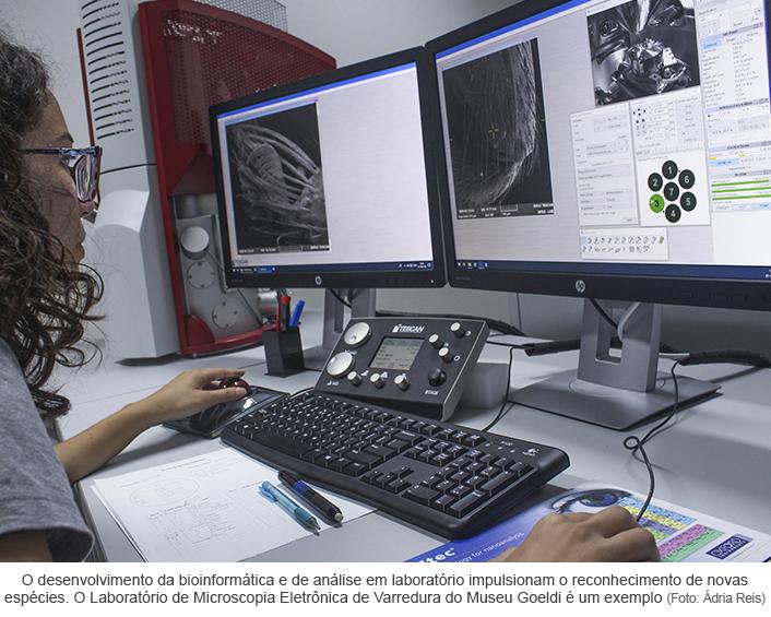 Laboratório de microscopia.png