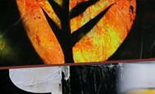 Na manhã desta quinta-feira (11), no Parque Zoobotânico do Museu Goeldi, será a abertura oficial do Salão Arte Pará 2018. Já são 10 anos de parceria e, nesta edição, os artistas convidados apresentam, em diferentes linguagens, a força da cultura dos povos indígenas do país. A programação segue até dezembro.