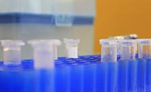 Museu Goeldi seleciona Técnico em Biologia Molecular