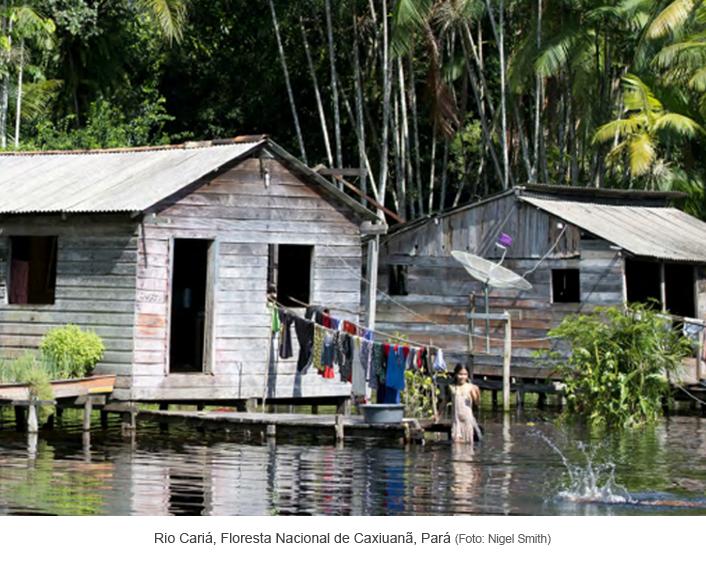 Rio Cariá - Floresta Nacional de Caxiuanã - Pará.png