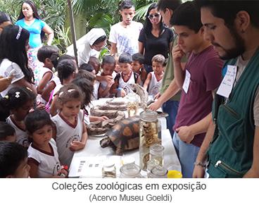 Coleções zoológicas em exposição