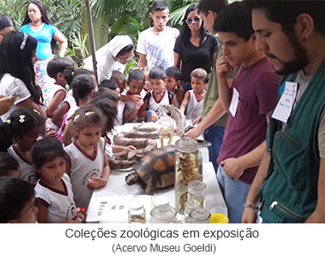 Coleções zoológicas em exposição.png