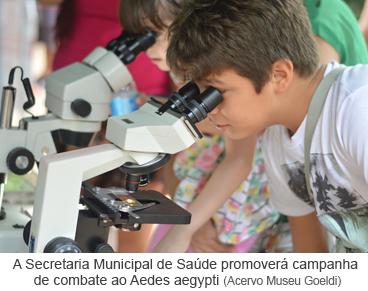 A Secretaria Municipal de Saúde promoverá campanha de combate ao Aedes aegypti