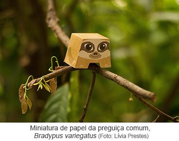 Miniatura de papel da preguiça comum