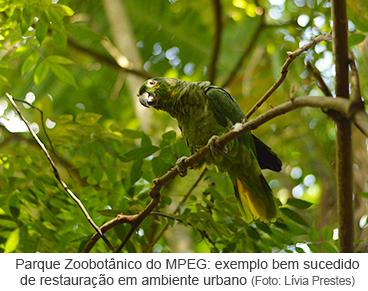 Parque Zoobotânico do MPEG: exemplo bem sucedido de resturação em ambiente urbano