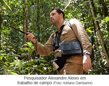Pesquisador Alexandre Aleixo em trabalho de campo. Foto de Adriano Gambarini.