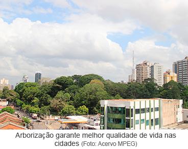 Arborização garante melhor qualidade de vida nas cidades