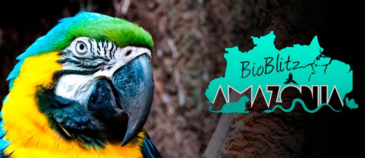 BioBlitz na Amazônia: 5 e 6/10. Inscrições até 20/09. Saiba mais.