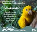 Reforma Aves