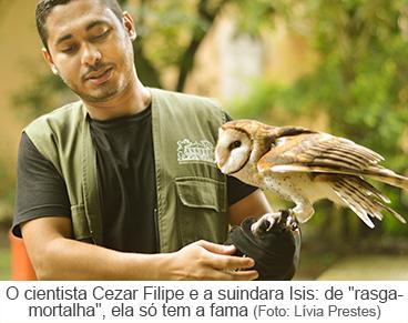"O cientista Cezar Filipe e a corja Isis: de ""rasga-mortalha"", ela só tem a fama"