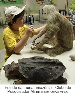 Estudo da fauna amazônica pelo Clube do Pesquisador Mirim