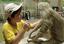 Estudo da fauna amazônica no Clube do Pesquisador Mirirm.png