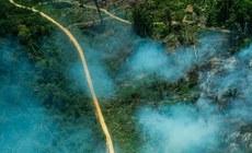 Terra indígena - Greenpeace - Fábio Nascimento