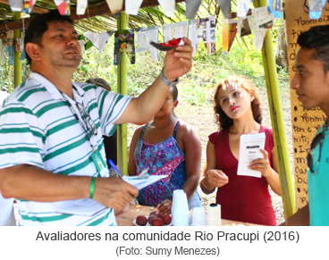 Avaliadores na comunidade Rio Pracupi (2016).png