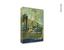 Capa do livro O último vapor, ascensão e queda da borracha na Amazônia (1820-1930)