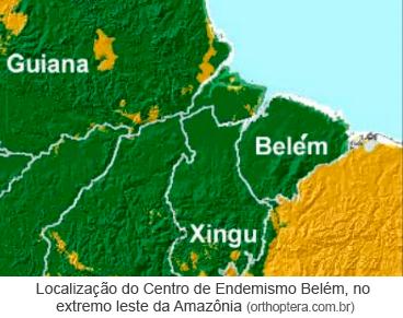 Localização do Centro de Endemismo Belém, no extremo leste da Amazônia