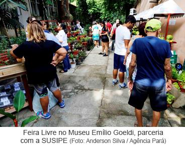 Feira Livre no Museu Emílio Goeldi, parceria com a SUSIPE