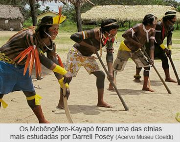 Os Mebêngôkre-Kayapó foram uma das etnias mais estudadas por Darrel Posey