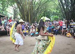 Apresentação de carimbó do grupo Intelectual anima os visitantes.