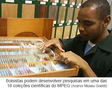 Bolsistas podem desenvolver pesquisas em uma das 18 coleções científicas do MPEG