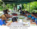 Oficina Plantas de valor econômico na Amazônia