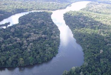 DIA 25 - III Simpósio da Biota Amazônica atualiza rumos do saber sobre a região 1.png