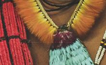 """A primeira sessão do XXVI Seminário PIBIC e II Seminário PIBIT, nesta segunda-feira (25), será de projetos da grande área """"Antropologia e Arqueologia, Informação e Documentação"""""""