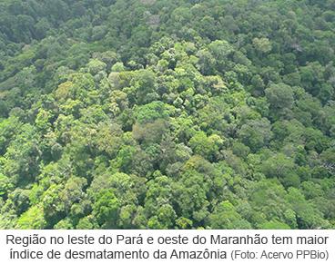 Região com maior índice de desmatamento do bioma amazônico
