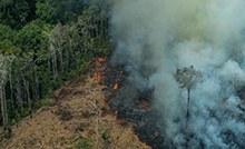 Museu Goeldi convida para refletir no Dia da Amazônia.jpg