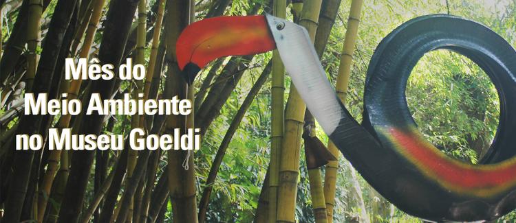 Museu Goeldi entra na agenda do Dia Mundial do Meio Ambiente