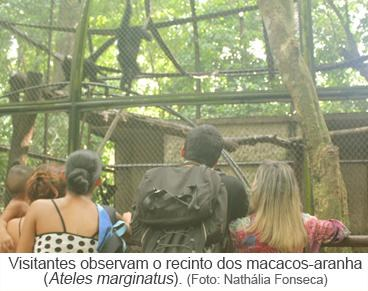 Visitantes observam o recinto dos macacos-aranhas