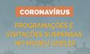 Miniatura-Coronavírus.png