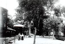 Imagem do Parque Zoobotânico do Museu Goeldi no ano de 1900