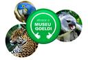 Campanha Abrace o Museu Goeldi.png