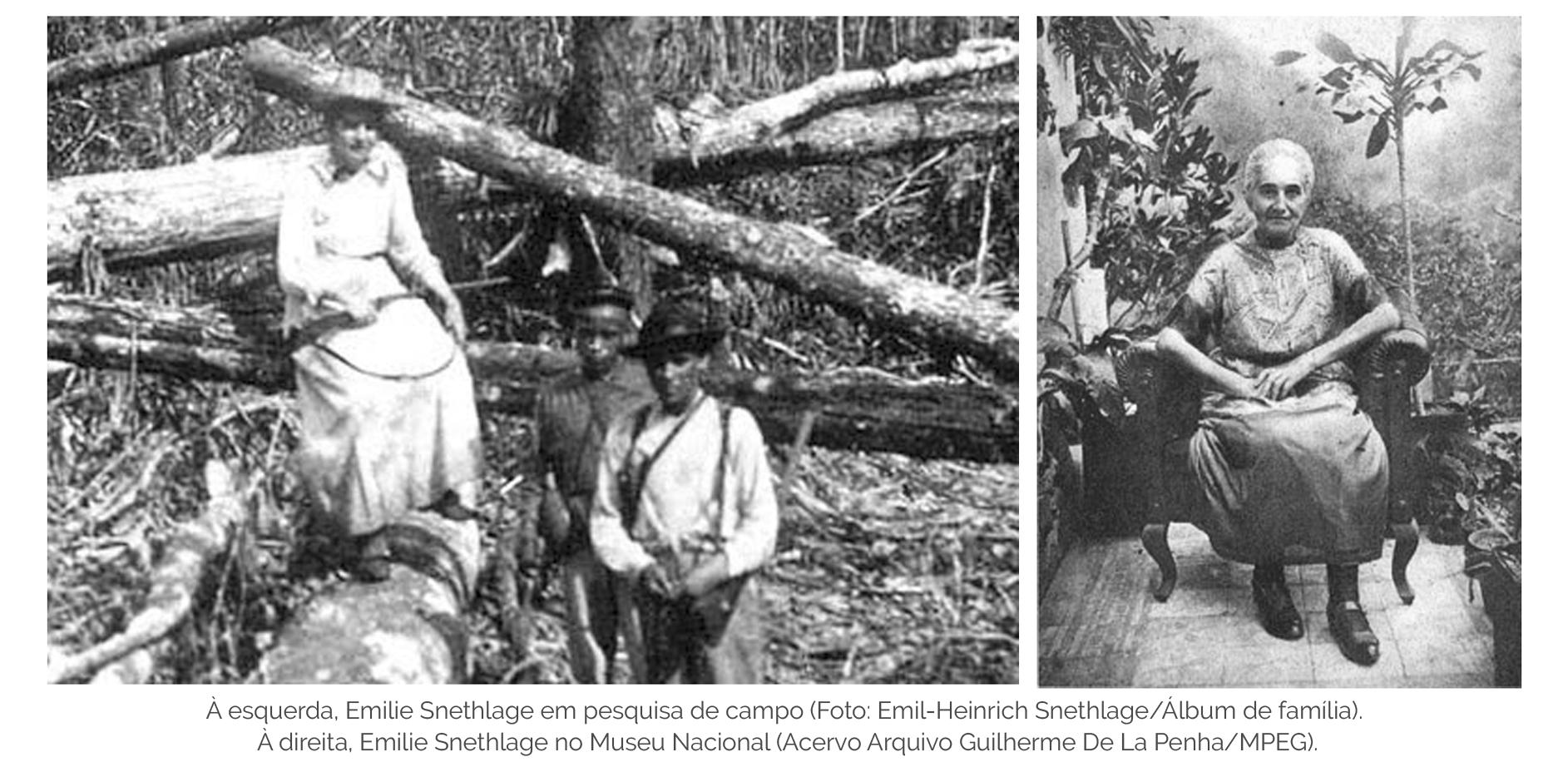 À esquerda, Emilie Snethlage em pesquisa de campo (Foto: Emil-Heinrich Snethlage/Álbum de família). À direita, Emilie Snethlage no Museu Nacional (Acervo Arquivo Guilherme De La Penha/MPEG).