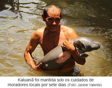 Kaluanã foi mantida sob os cuidados de moradores locais por sete dias.png