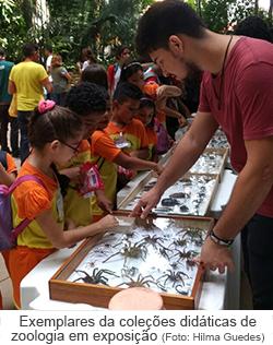 Exemplres das coleções didáticas de zoologia em exposição