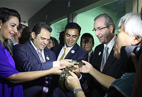 No aquário Jacques Huber o grupo interagio com a fauna amazônica.png