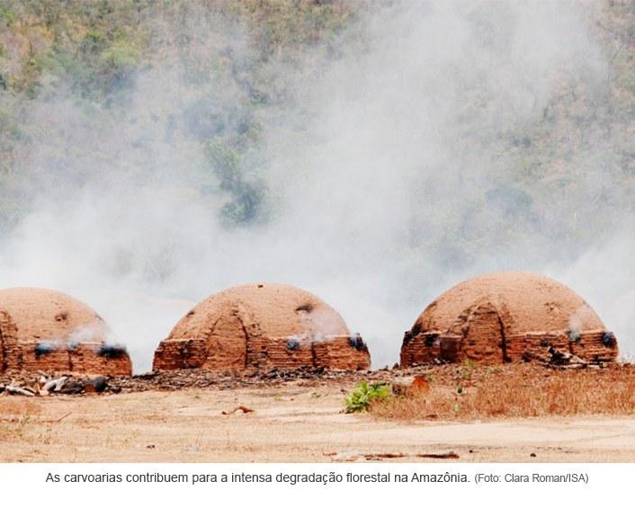 As carvoarias e a degradação florestal da Amazônia.jpg