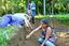 Mais de 50 sítios arqueológicos ja foram identificados em Gurupá.png
