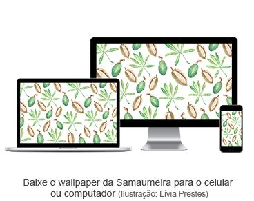 Baixe o wallpaper da Samaumeira para o celular ou computador