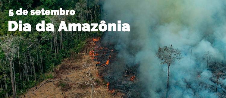 Dia da Amazônia.png
