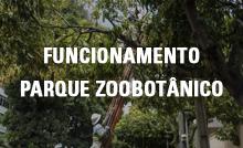 Funcionamento do Parque Zoobotânico - poda de árvores
